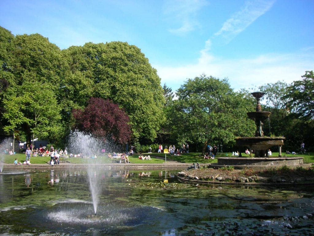 summer fitgerald park cork
