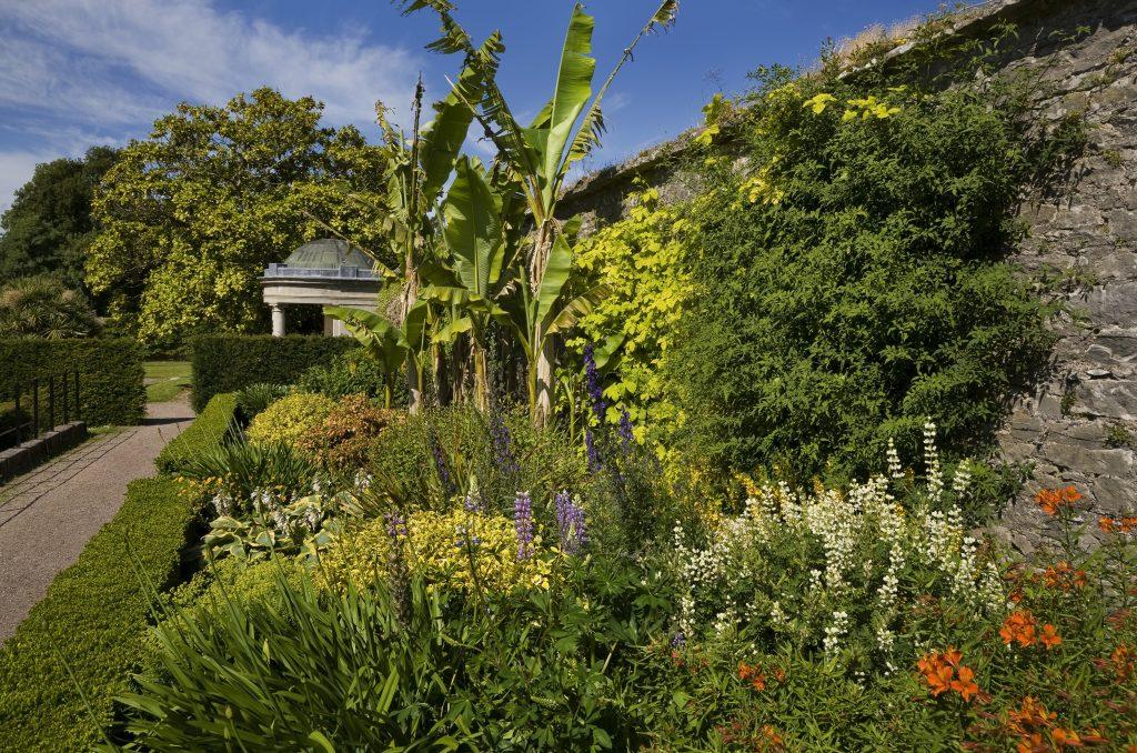 Fota gardens near Clayton hotel silversprings